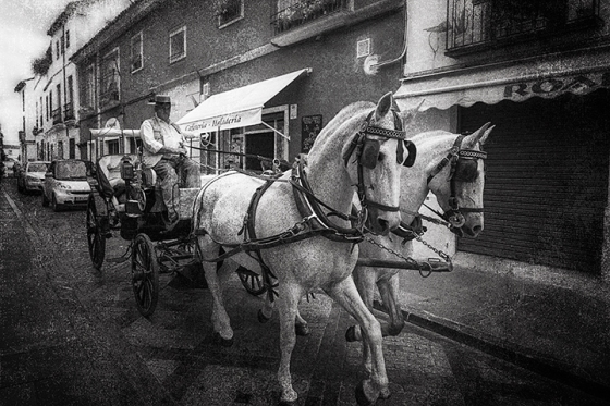Carriage rides in Cordoba Spain
