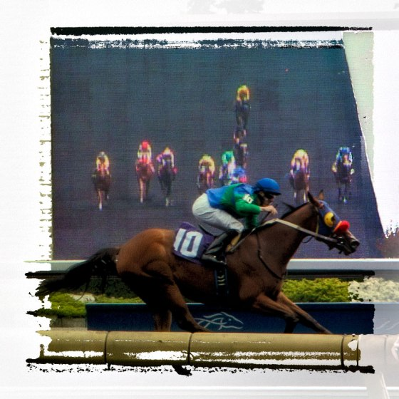 First past the post; Woodbine, Toronto Canada; copyright jmeyersforeman