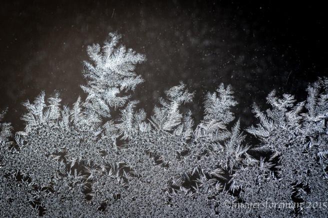 Frost on the window; copyright jmeyersforeman 2015